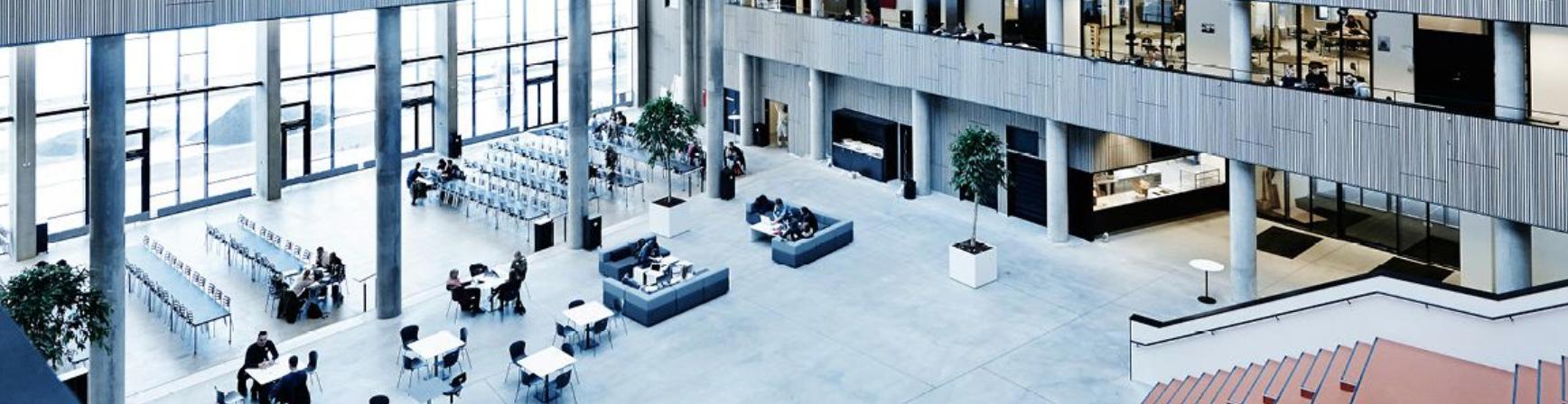 Aalborg Universitet Case